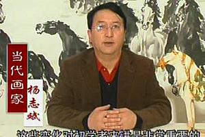 杨志斌马的画法马的结构与局部讲解视频教程百度云网盘免费下载观看