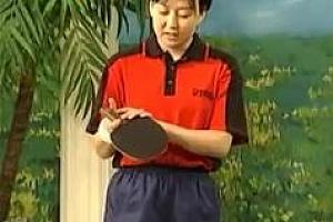 《学打乒乓球4集全》乒乓球入门基本功_赵霞教打乒乓球的技巧百度云网盘免费下载