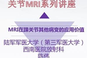 丁香园公开课之骨与关节MRI全面解读视频教程百度网盘下载