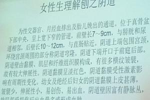 2019王太坤徒手男女私密全程教学徒手私密缩阴骨盆修复教程内外塑形百度网盘下载学习