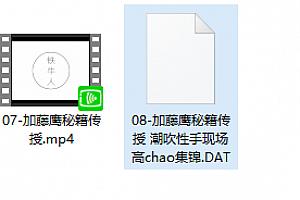 加藤鹰秘技传授全套日语中文字幕全套十周年珍藏版已完结百度网盘下载学习