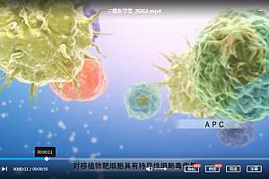 医学动画合集医学三维3d动画生动演示冠状病毒视频病理生理诊断传染百度云网盘下载学习