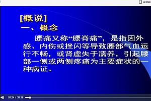 南京中医药大学中医内科学视频课程薛博瑜146讲完整版百度云网盘下载学习中医视频