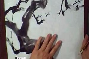 梅若花鸟写意教学讲座4尺开条屏牡丹孔雀蜻蜓百度云网盘下载学习花鸟画技法视频教程