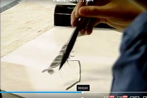 程茂全怎样画虾技法示范大师绘画入门教学视频百度云网盘下载学习虾的画法视频