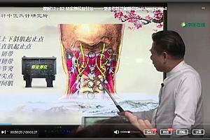 刘国轩中医炁针疗法视频课程合集中医古炁针气化针法基础和肩胸椎腰中风偏瘫临床实战教学课程百度云网盘下载学习