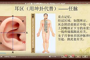 李慧八卦耳穴疗法视频教程家庭常见病治疗膝痛感冒腹泻案例百度云网盘下载学习