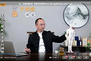 2021年羊爸爸董俊佐手部取象疗法视频课程33集百度云网盘下载学习中医教程